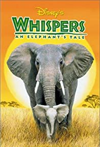 Primary photo for Whispers: An Elephant's Tale