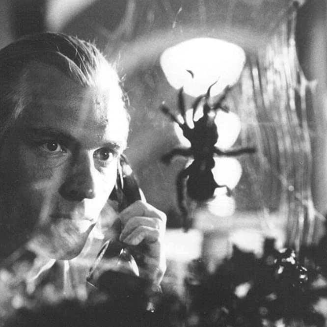 Julian Sands in Arachnophobia (1990)