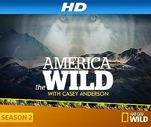 Where to stream America the Wild