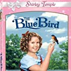 Shirley Temple in The Blue Bird (1940)