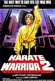 Karate Warrior 2 Poster