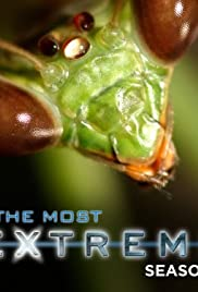 The Most Extreme Poster - TV Show Forum, Cast, Reviews