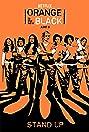 Orange Is the New Black (2013) Poster