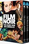 Film Noir the Dark Side of Cinema II