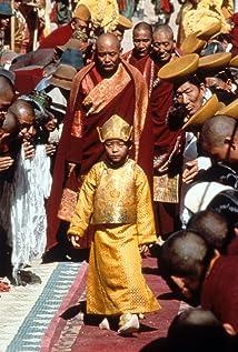 Tulku Jamyang Kunga Tenzin Picture