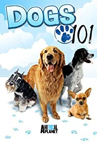 Dogs 101 (2008)
