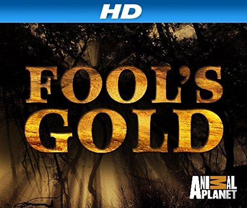 fools gold imdb parents guide