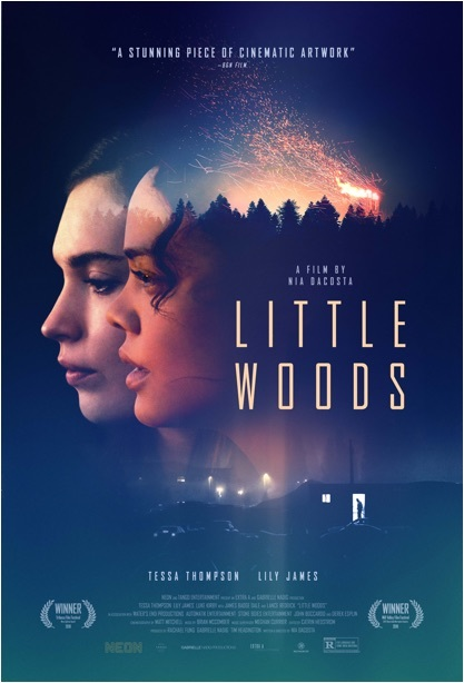 Tessa Thompson and Lily James in Little Woods (2018)