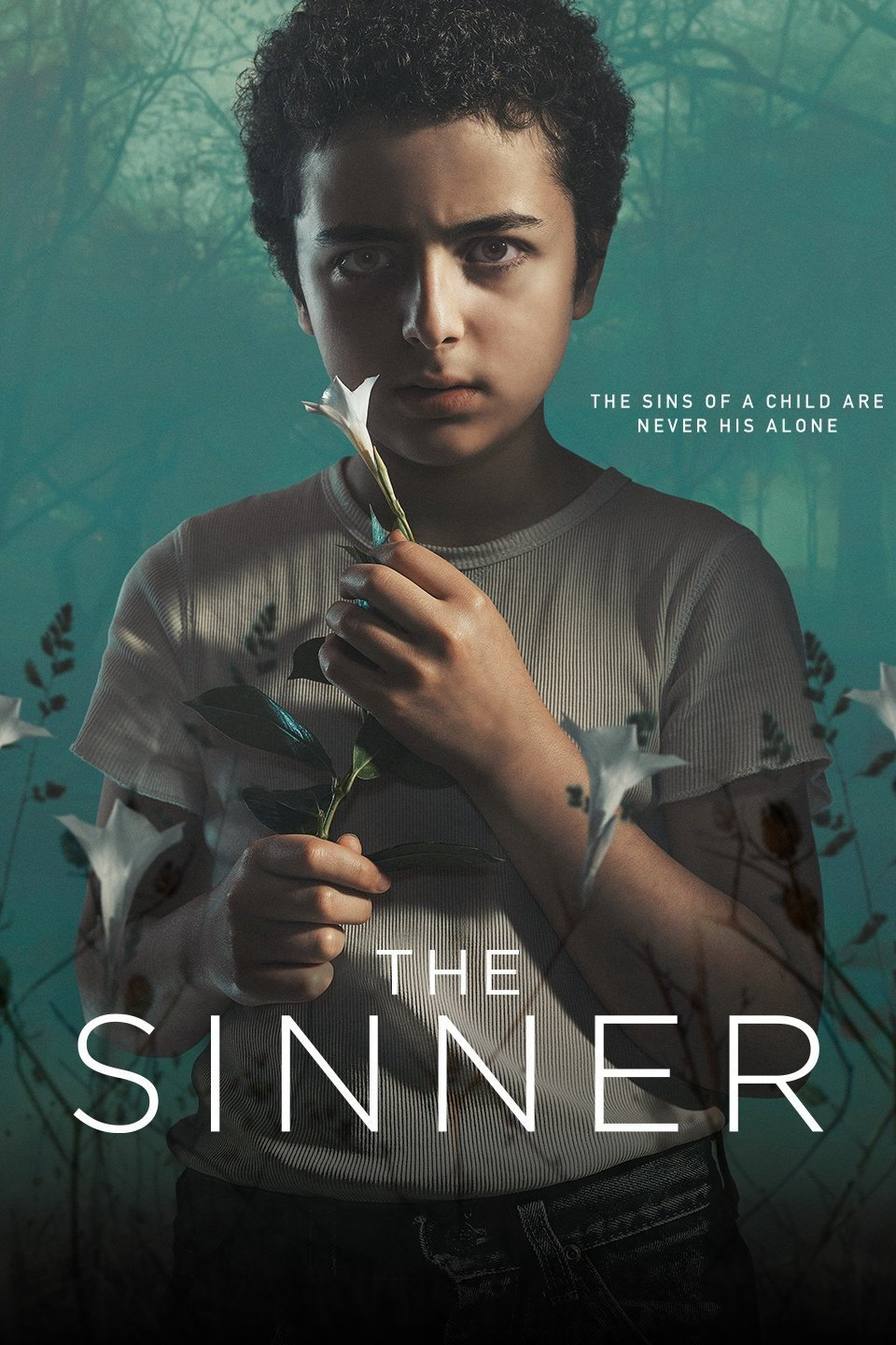 The Sinner: Season 2(2018) Complete Web-DL All Episodes Download