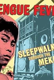 Sleepwalking Through the Mekong Poster