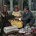 Elizabeth Montgomery, Kathleen Nolan, and Dick York in Bewitched (1964)