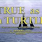 True as a Turtle (1957)