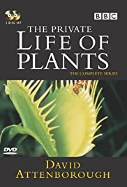 The Private Life of Plants Poster