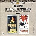 La tarantola dal ventre nero (1971)