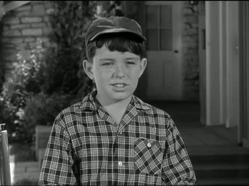 "Leave It to Beaver"" Beavers Freckles (TV Episode 1960) - IMDb"