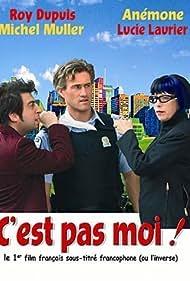 C'est pas moi, c'est l'autre (2004)