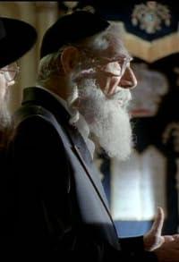 Primary photo for Torah! Torah! Torah!