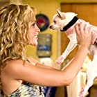 Drew Barrymore, Piper Perabo, and Angel in Beverly Hills Chihuahua (2008)