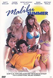 Malibu Summer Poster