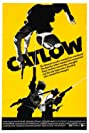 Catlow (1971) Poster