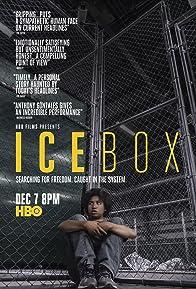Primary photo for Icebox