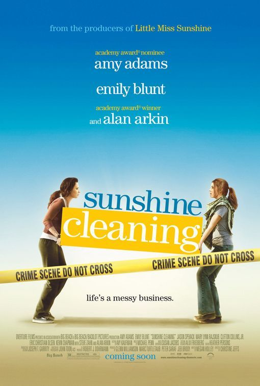 Sunshine Cleaning  Streaming VF