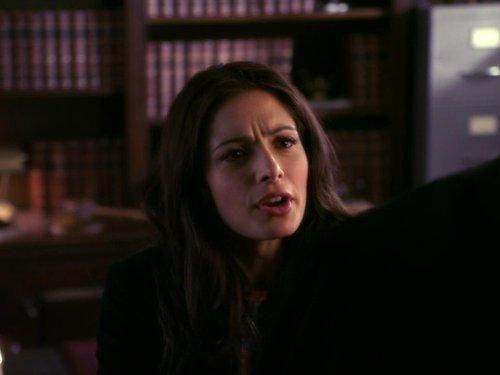 Sarah Shahi in Fairly Legal (2011)