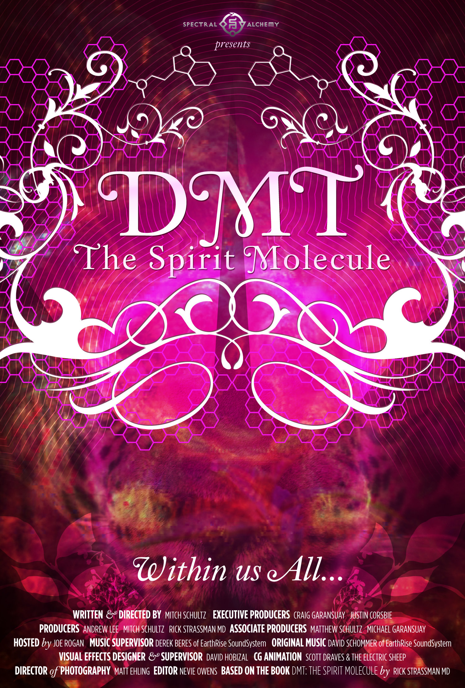 DMT: The Spirit Molecule (2010) - IMDb