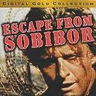 Rutger Hauer in Escape from Sobibor (1987)