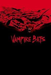 Primary photo for Vampire Bats