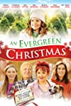 Arc swoops on Evergreen Christmas