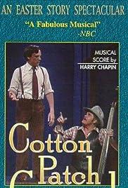 Cotton Patch Gospel Poster