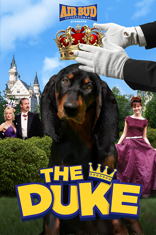 The Duke 1999 Hindi Dual Audio 720p HDRip 800MB Download