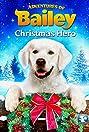 Adventures of Bailey: Christmas Hero (2012) Poster