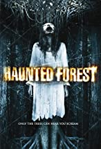 Primary image for Haunted Forest
