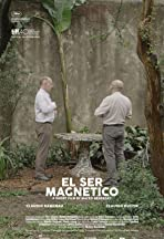 The Magnetic Nature
