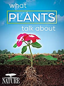 Best sites for watching online movies What Plants Talk About [h264]