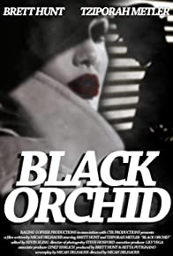 Primary photo for Black Orchid