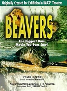 Watch free funny movies Beavers by none [1920x1080]