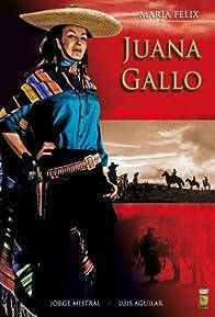 Primary photo for The Guns of Juana Gallo