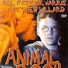 Neil Patrick Harris, Matthew Lillard, and Amanda Peet in Animal Room (1995)