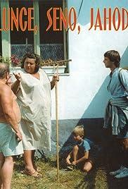 Slunce, seno, jahody(1984) Poster - Movie Forum, Cast, Reviews