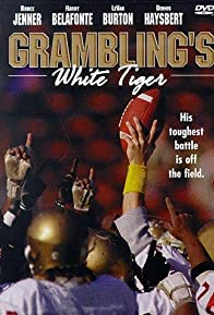 Primary photo for Grambling's White Tiger