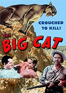 Unlimited free downloads movies The Big Cat [Mkv]