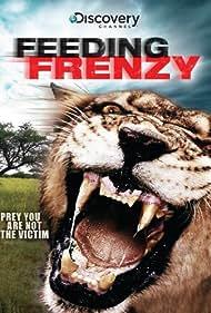 Lion Feeding Frenzy (2008)