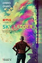 Sky Ladder: The Art of Cai Guo-Qiang (2016) Poster
