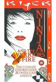 Ninja and the Warriors of Fire (1987) film en francais gratuit