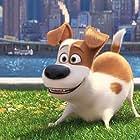 Louis C.K. in The Secret Life of Pets (2016)