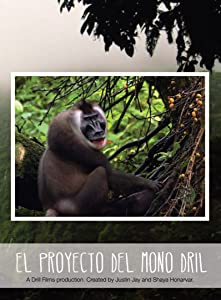 New movies dvdrip free download El Proyecto del Mono Dril [1920x1200]