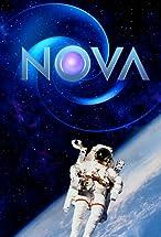 Primary image for Nova